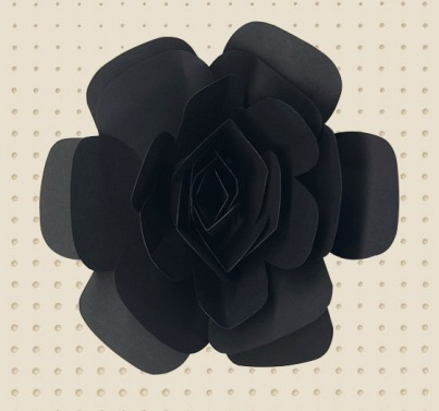 marni fragrance black rose